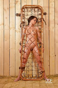 Sophie Lynx is Bound in a Cage and Probed